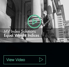 MV Index Solutions Equal Weight Indices